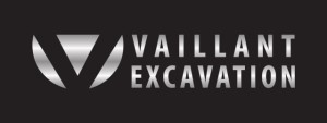 Vaillant_Silver_HD